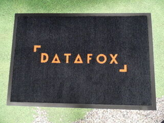 Logomatto Datafox